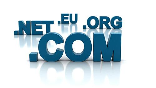 Domain Registration