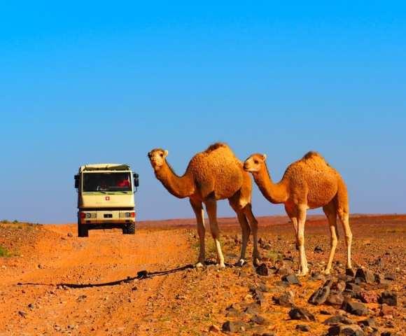Wunderschöne Wüsten in Marokko