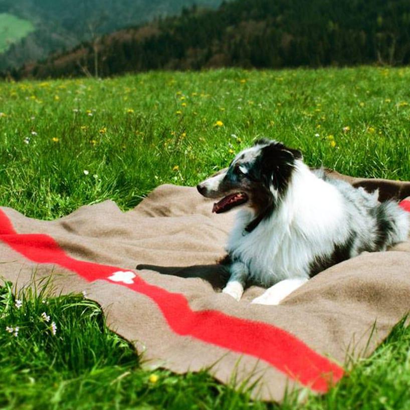 Swiss Decke
