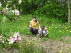 Wiosenne prace w rogródku