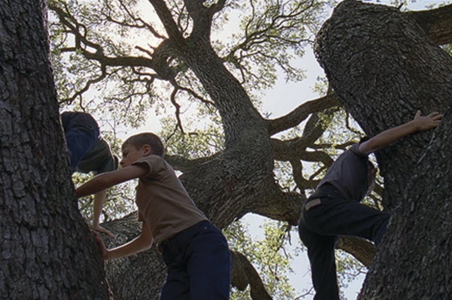 movie-tree-of-life-2011-TERRENCE-MALICK-www.lylybye.blogspot.com_