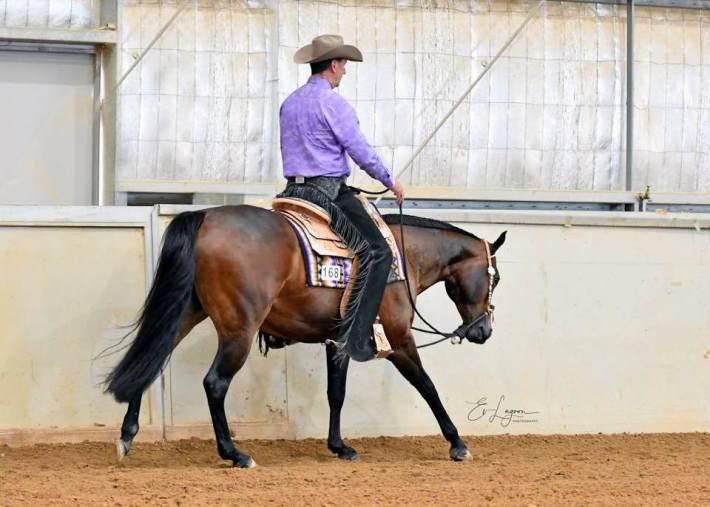 Trainer Mark Schaffer riding Sheza Little Lazy, (Lazy Loper x Amazen Grace) 4yo owner Louise Blake