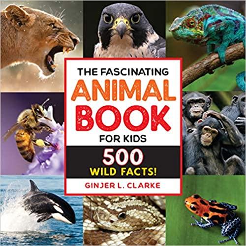 Animal book - teacher favorite! #ad