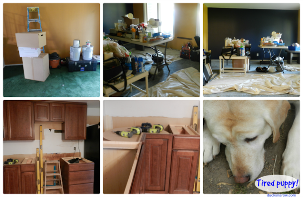 kitchen redo, remodeling, home renovations, tired puppy