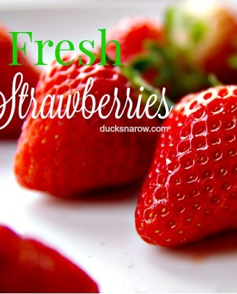 How to keep fresh strawberries from spoiling #tips