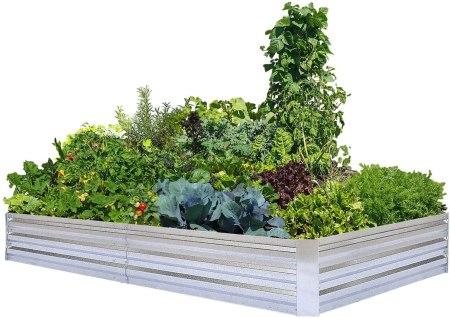 Galvanized metal raised garden beds