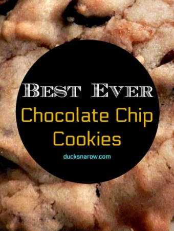 Best ever chocolate chip cookies #recipes