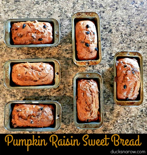 Pumpkin raisin walnut sweet bread #recipes