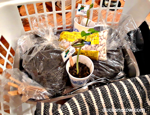 Transport your garden supplies in a laundry basket or box