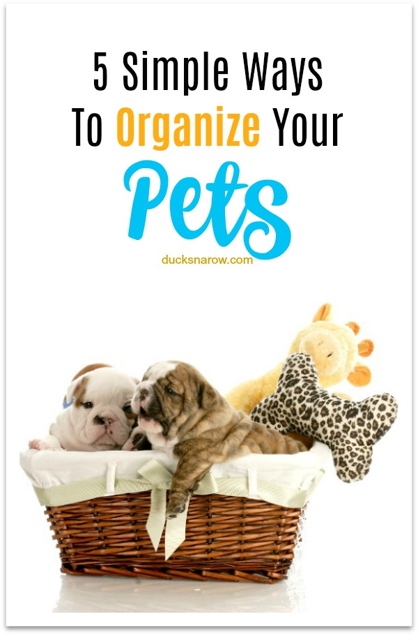 5 simple ways to organize your pet's stuff