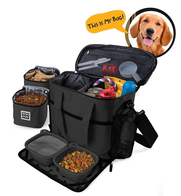 Pack a bag for your dog - perfect for families on the go! #travel