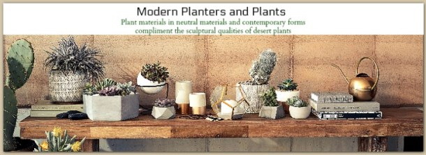 Modern plants and planters inspired by the desert #ad