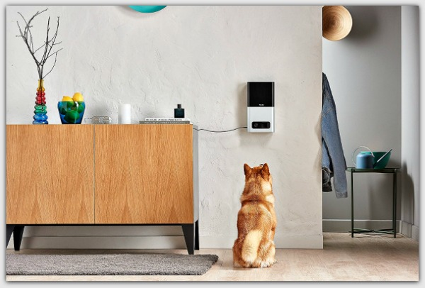 Video cam with audio allows you to talk to your pet, hear him and even flip him a treat #ad