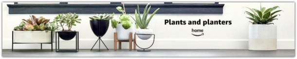 Plants and planters on Amazon #ad