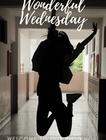 Wonderful Wednesday Blog Hop