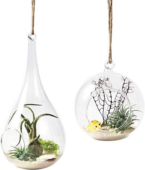 Glass teardrop shaped terrariums planters #ad