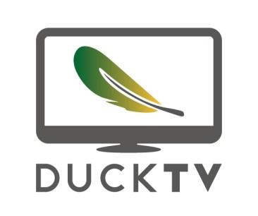 DTV logo colour2