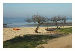 CP-DSC_5431-tamaris & plage