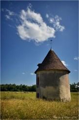BLOG-DSC_28648-domaine château la Brède