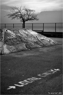 BLOG-DSC_33805-local only piste skate board et arbre au couchant N&B