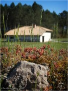 BLOG-P4108599-mur cimetière St Pierre de Mons