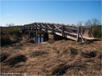 BLOG-P4128707-pont prés salés Arès