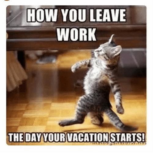 19 Family Vacation Memes Dude Memes