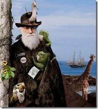 darwin boating
