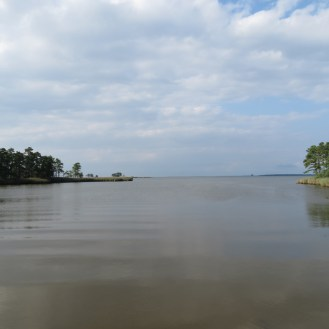 Chesapeake Bay From the Cross-Island Trail in Kent Narrows, Maryland