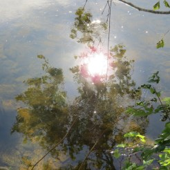 Reflection in the water of the Potomac River
