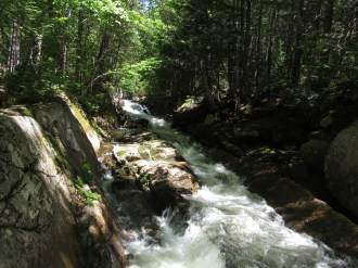 Stream in the 100-Mile Wilderness in Maine