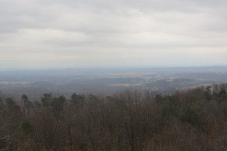 View From the Clark State Forest Fire Tower