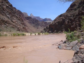 Colorado River at the End of the Bright Angel Trail in the Grand Canyon, Arizona