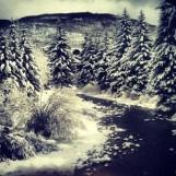 Gore Creek in Vail, Colorado