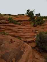 Big Spring Canyon