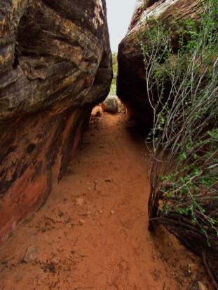 Trail into Devils Kitchen