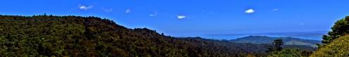 Overlook of the Firth of Thames in the Hunua Ranges Panorama