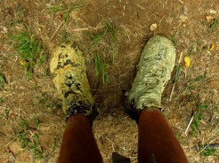 Muddy Shoes in the Raetea Forest