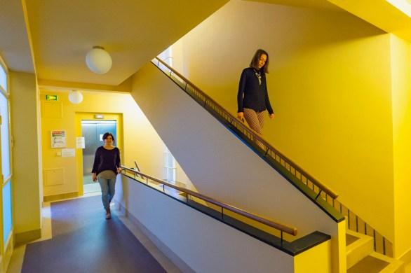 Trappenhuis, Collège néerlandais, Parijs ©Antoine Meyssonnier