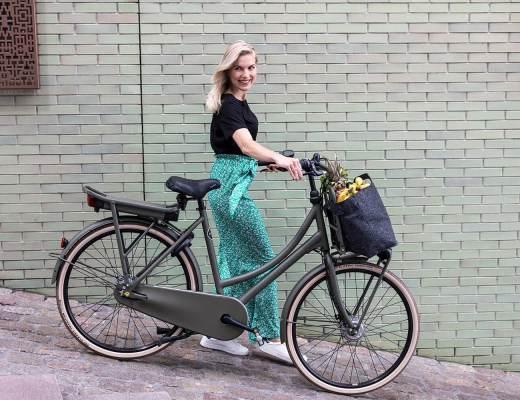 Cortina Dutch Fashion Bikes