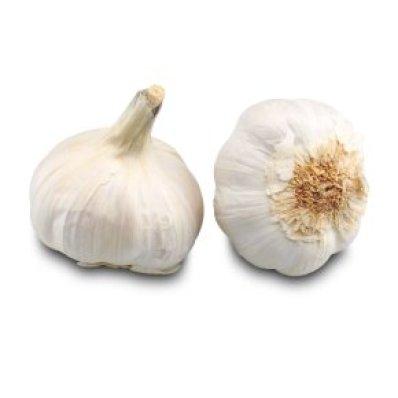 ProWare Fresh Essentials Garlic