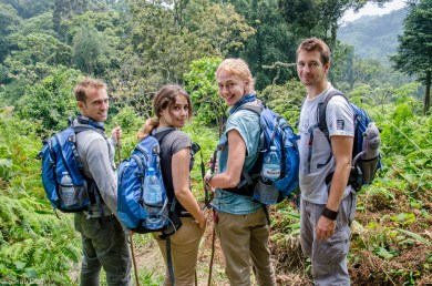 Mountain gorilla tracking in Bwindi Impenetrable Forest