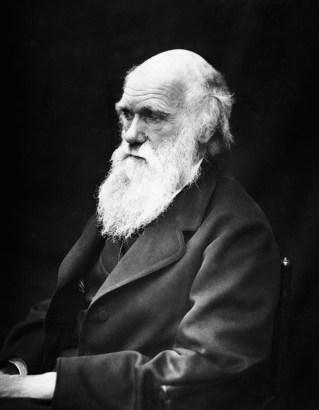 Charles Darwin Pixabay