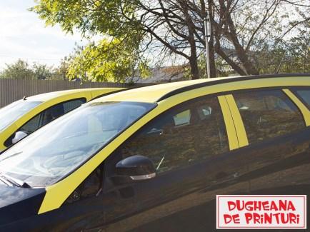 dugheana-de-printuri-colantare-taxi-4