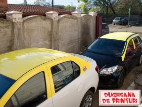 dugheana-de-printuri-colantare-taxi-9