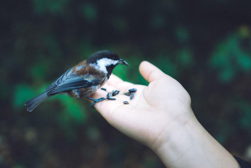 Read more about the article Tout ce que vous savez déjà au sujet de Mère Nature