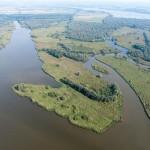 Biesbosch, er verdwijnt en verschijnt