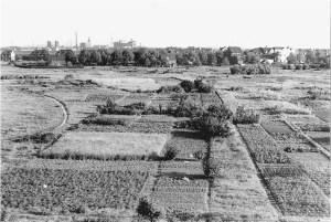 Um 1950 noch freies Feld: Heute befindet sich hier im Bereich Friedrich-Ebert-Straße / Dr.-Hans-Böckler-Straße der Kometenplatz in Aldenrade, das Zentrum Walsums. Foto: © Horst Köberling / Sutton Verlag.