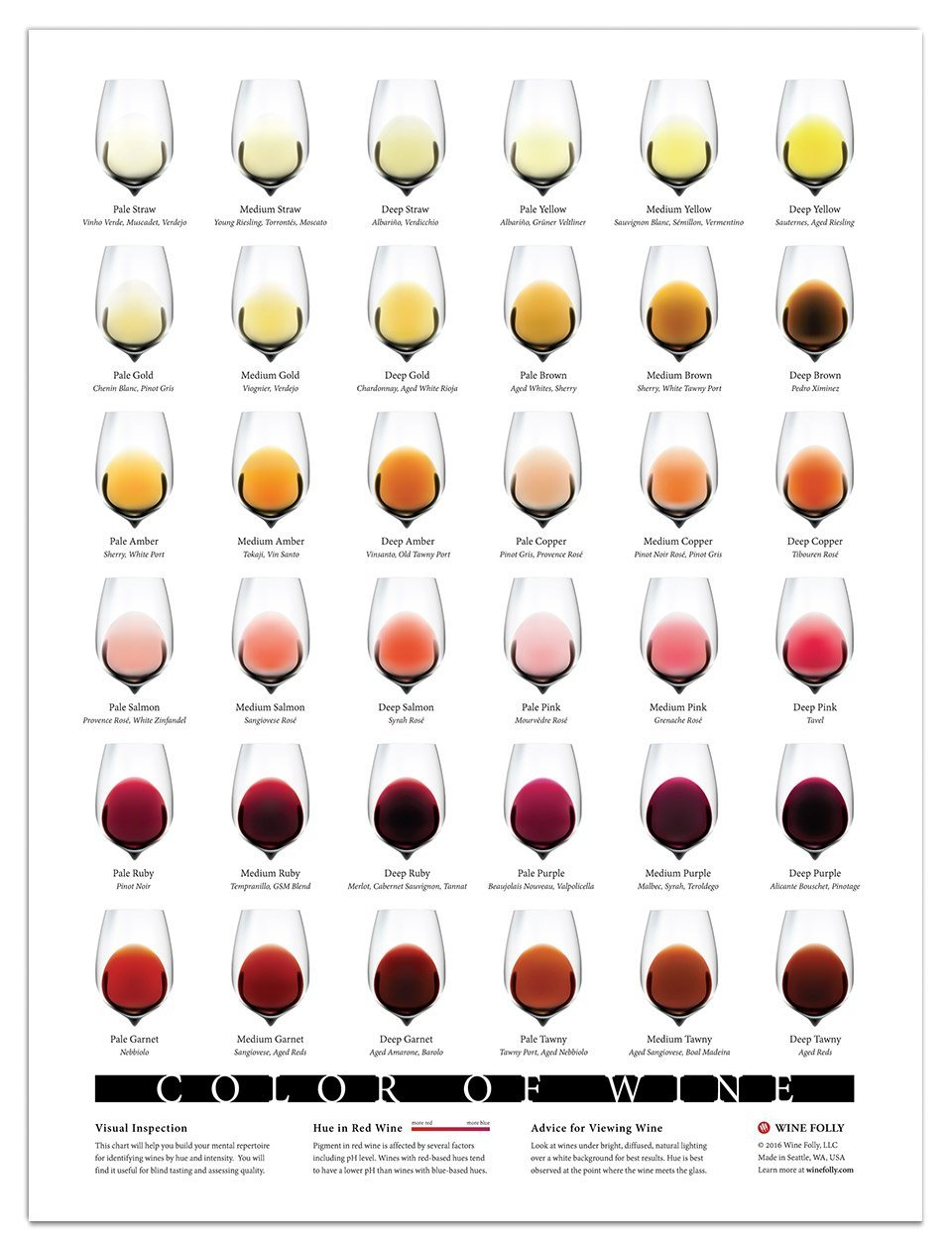 Colour of Wine Poster by Winefolly