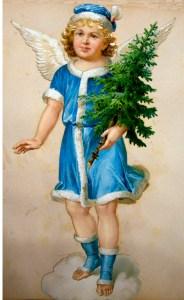 Dette må også være en han engel bemærk de blå farver på hannerne.